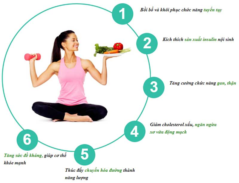 Cơ chế gluco active