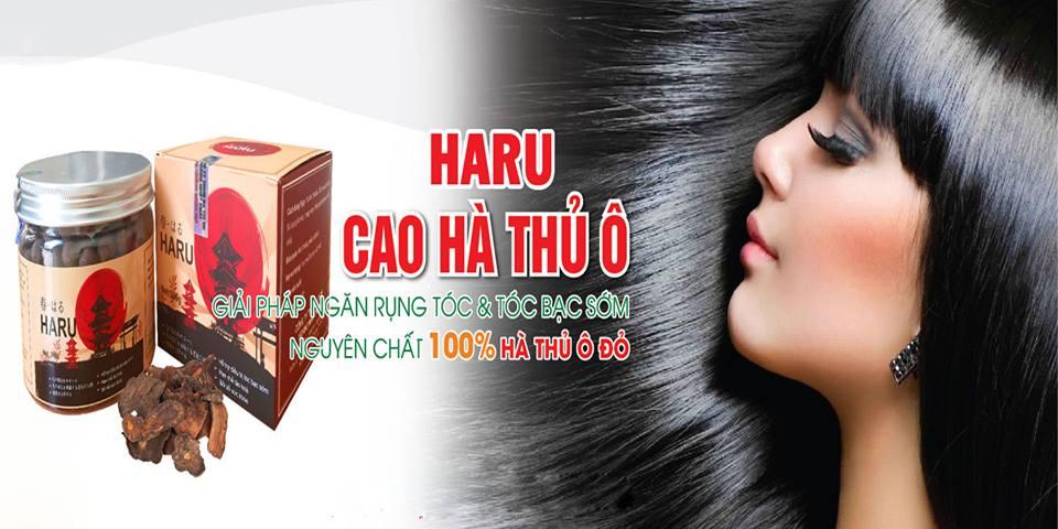 Hà thủ ô Haru điều trị bạc tóc hạn chế lão hóa bồi bổ sức khỏe