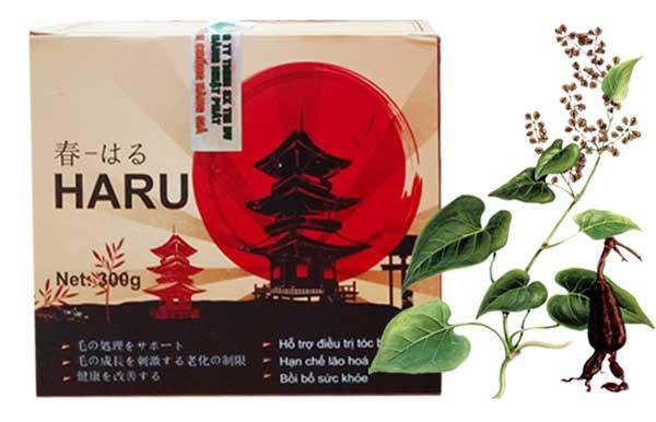 Hà thủ ô Haru Nhật Bản